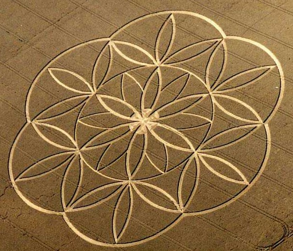 Crop circle which appeared in Tegdown Hill, 22nd July 2003 and representing the most fundamental figure in sacred geometry, 'The Flower of Life'